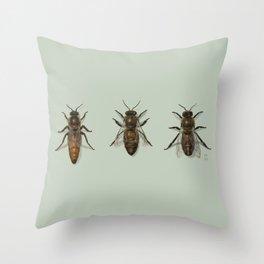 Honey Bee Family Throw Pillow