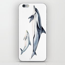 Striped dolphin iPhone Skin