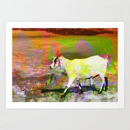 goat flower Art Print
