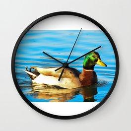 Mallard Duck  Wall Clock