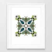 insects Framed Art Prints featuring Insects by Phyllida Jacobs