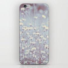 Wild Abandon -- Dreamy Fleabane Daisies in Lavender Gray Mist iPhone & iPod Skin