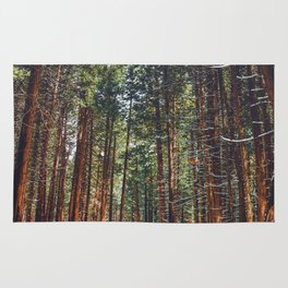 The Winter Forest (Color) Rug