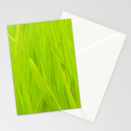 Wall of tall green grass Stationery Cards