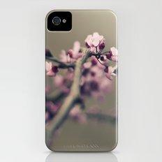 pink bullets Slim Case iPhone (4, 4s)