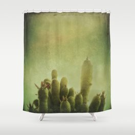 Cactus in my mind Shower Curtain