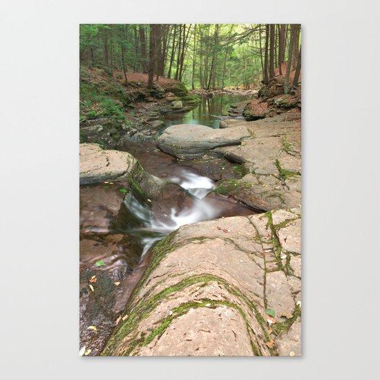 Worlds End Forest Stream Canvas Print