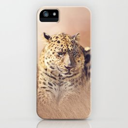 Wild Leopard resting in the grass iPhone Case