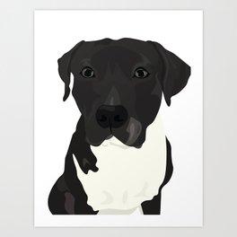 Atticus the Pit Bull Art Print