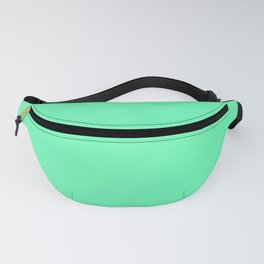 Spring - Pastel - Easter Green Solid Color 3 Fanny Pack