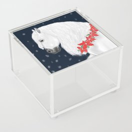 Christmas Horse Acrylic Box