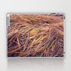 autumn grass Laptop & iPad Skin