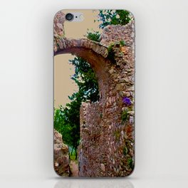 secret garden behind byzantine ruins iPhone Skin