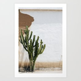 California Cactus Art Print