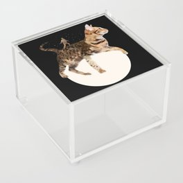 Moon Cat Acrylic Box