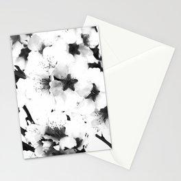 Sakura XV Stationery Cards