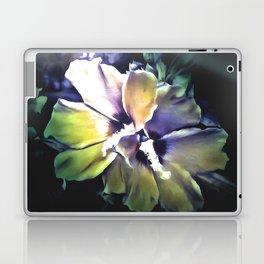 Sun Rays On The Hibiscus Flower Laptop & iPad Skin