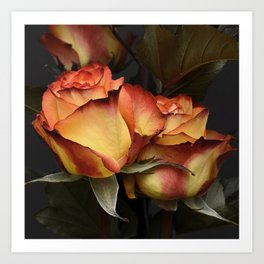 Red Yellow Roses Art Print