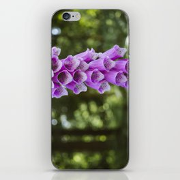 Flower. Purple Foxglove (digitalis purpurea) growing wild in woodland. iPhone Skin