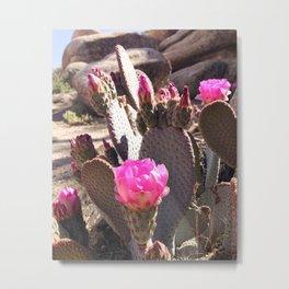 Joshua Tree Cactus Bloom Metal Print