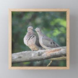 Love Doves Framed Mini Art Print