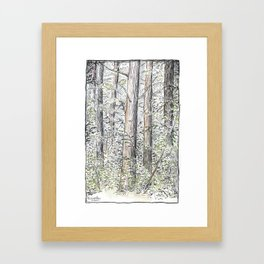 Tree Aspects 4 Framed Art Print