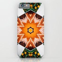 in the orange groves iPhone Case