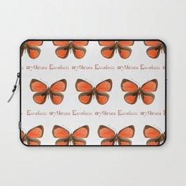 Butterfly - Euselasia erythraea Laptop Sleeve
