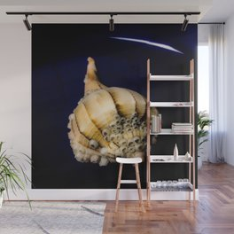 Sea Shell with Barnacles Wall Mural