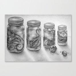 Jars Canvas Print