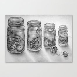 Jars Canvas Print