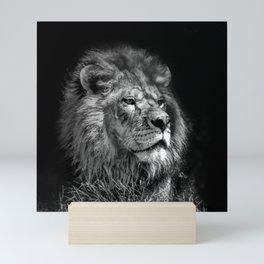 Proud Young Lion Mini Art Print