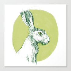 Green Hare Canvas Print