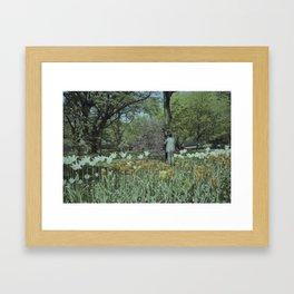 Brooklyn Botanic Garden Framed Art Print
