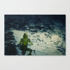 Did you leave this down here Canvas Print