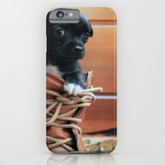 Teddy.  iPhone 6s Slim Case