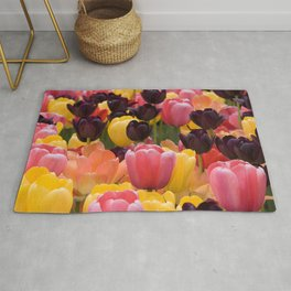 Black Pink and Yellow Tulips by Steve Ricci Rug