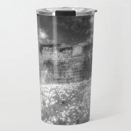 York City Walls Travel Mug