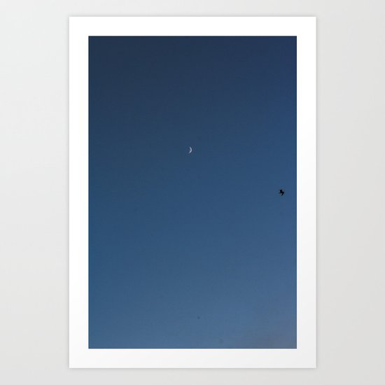 moon and seagull Art Print