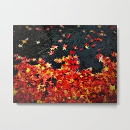 Tacoma Autumn Metal Print