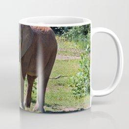 Birmingham Elephant Coffee Mug