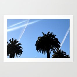 CA Palm Art Print