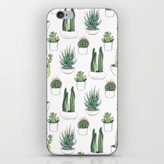 watercolour cacti and succulent iPhone & iPod Skin