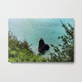 Lost Coast Trail Marker Metal Print