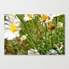 Happy Flowers Canvas Print