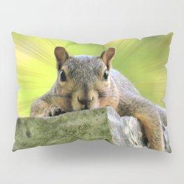 Relaxed Squirrel Pillow Sham