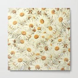 Daisies - Underfoot Metal Print