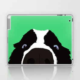 Begging Border Collie Laptop & iPad Skin