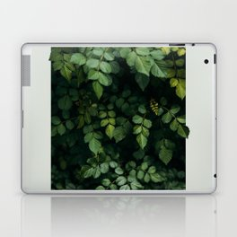 Growth Laptop & iPad Skin