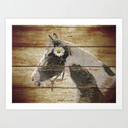 Daisy Flower on Rustic Brown Cream Horse Country Barn Art A166 Art Print